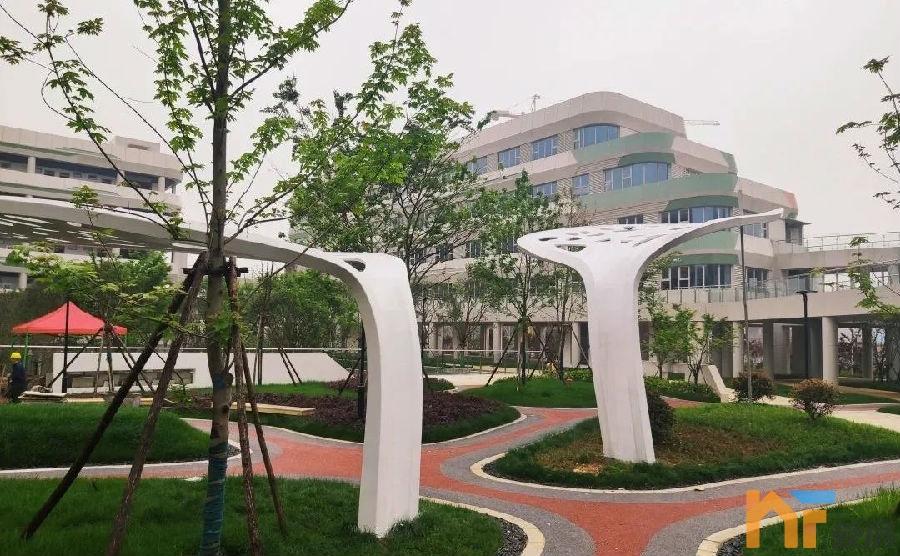 赣江新区国际学校3.jpg